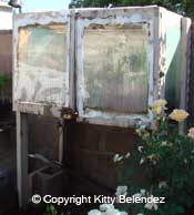 How To Build a Misting Box for Propagating Rose Cuttings